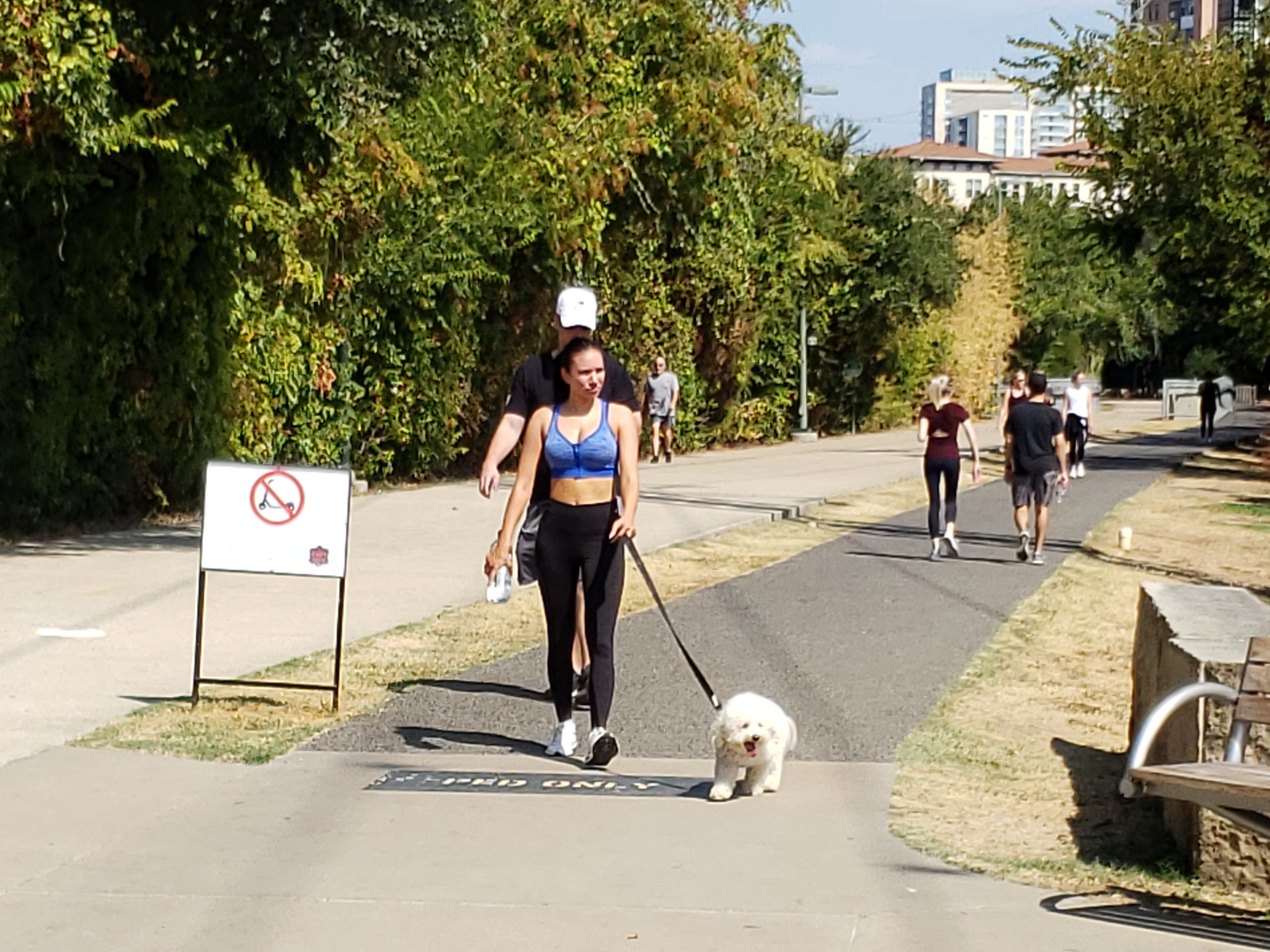 katy trail dallas dog walking